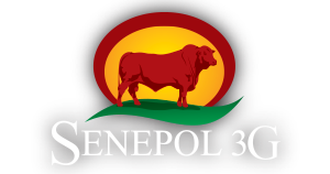 SENEPOL 3G WEEKEND